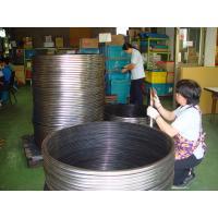 Custom Anti - Corrosion VITON, NBR, HNBR, ACM Oil Seal