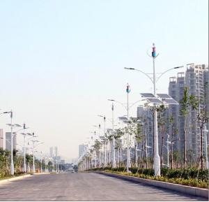 China LED Sreet の照明装置のための縦の軸線の Maglev の風発電機 300W wholesale