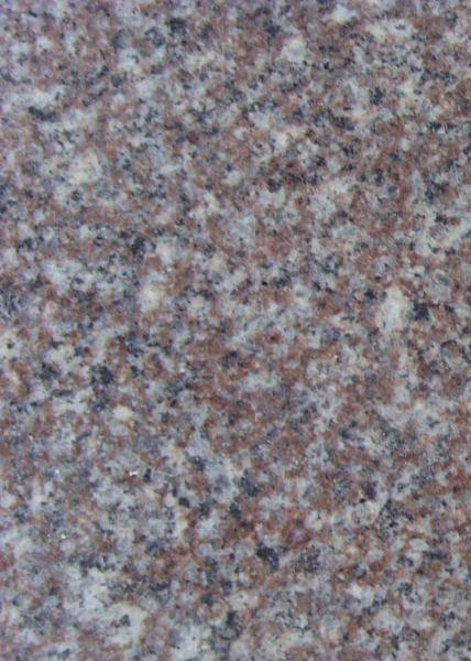 Quality Beautiful Granite Stone Floor Tiles G664 Cherry Red Stone For Paving / Worktop for sale
