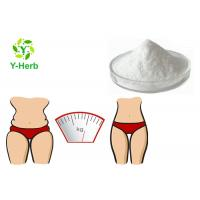 China White Weight Loss Raw Supplement 99% Food Grade Acety L-Carnitine Base Powder wholesale