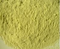 China Kiwi Fruit Powder,Kiwi,Actinidiae,Hair Pear,Monkeys Mear,Yang Tao,Sanyo Peach,Peach Fox,Wild Pear wholesale