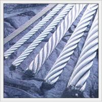 China 7*7 steel wire rope coated PVC/PE/Nyong wholesale