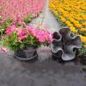 China Plastic Flower Pot (LAM-P-A) wholesale