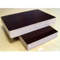 China Good quality Film Faced Plywood/marine plywood/shuttering plywood at competitive price on sale