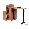 China ASF-10-009 Muti Functional Manicure Table ODM Salon Furniture wholesale