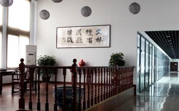 Wuhan Wenlin Technology Co. Ltd