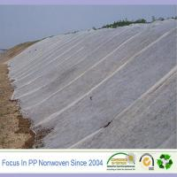 China PP nonwoven fabric for agriculture cover on sale