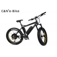 China 2 Wheels Electric Assist Fat Tire Mountain Bike With Disc Brakes 40 - 60km/h Max Speed wholesale