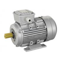 China MS Series Three-Phase Ac Electric Motor With Aluminium Housing wholesale