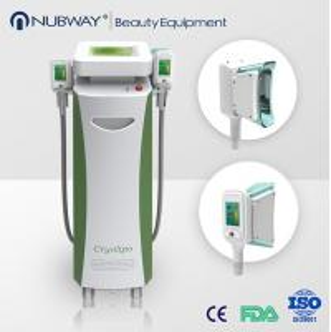 China Cryolipolysis Slimming Weight Loss / Fat Reduce Cryolipolysis Equipment wholesale