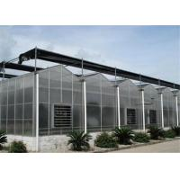 China Large Size Polycarbonate Greenhouse Kit 2.8mm - 20mm Thickness With Stable Structure wholesale