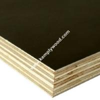 Paper Faced Plywood ~ Waterproof laminated film faced plywood for malaysia