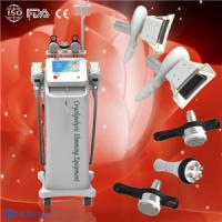 China Body Slimming Cryolipolysis Fat Freeze Slimming Equipment for fat lose spa / clinic wholesale