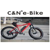 China 29PF Panasonic Battery Fat Tire Electric Snow Bike With Electric Motor 200kgs Loading wholesale