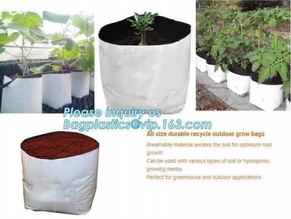 Quality Polyethylene Durable Jumbo Tree Planter Bags, Heavy Duty Growing Bags,Effective UV Stabilized Black White Plastic Growin for sale