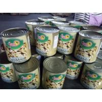 China Canned Whole Mushroom In Tins 24*425ml / NW. 425g DW. 200g 180g or Big Size on sale