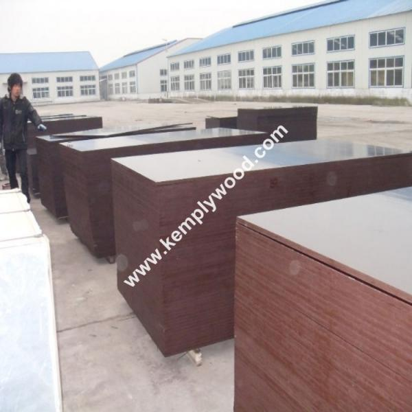 Quality Shandong linyi film faced plywood marine plywood for concrete formwork for sale