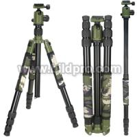 China Compact Tripod Outdoor Photographic Tripod Stand Video Tripod on sale