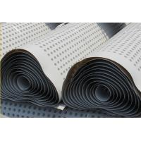 China Plastic Compound Dimpled Drainage Sheet Waterproof HDPE Drain Board on sale
