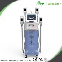 China Fast fat removal cryo lipolysis slimming machine hot in Europe wholesale