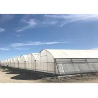 China Smart Control Plastic Film Greenhouse , Flower / Vegetable Agricultural Greenhouse on sale