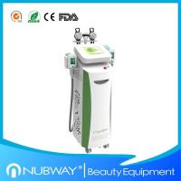 China Cryolipolysis Slimming Equipment with Color Apperance wholesale
