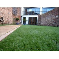 OEM Outdoor Artificial Grass Lawn Turf 11000Dtex 25mm for Garden Decorations