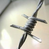 China BWG の 12*14 によって電流を通される有刺鉄線 wholesale