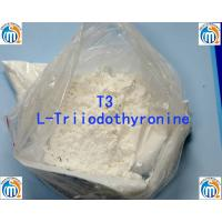 China Oral Injectable Anabolic Steroid CAS 55-06-1 L-Triiodothyronine T3 wholesale
