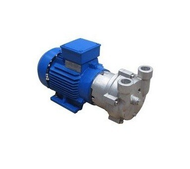 Quality Liquid Ring Vacuum Pump Adopt Mechanical Seal as Standard Configuration for sale
