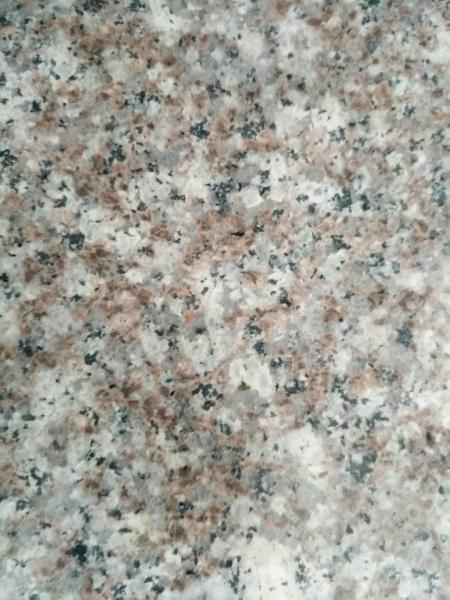 Quality G664 Residential Honed Granite Floor Tile Low Radiation Stone Material for sale