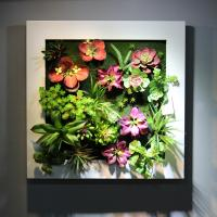 China Home Furnishing Artificial Living Wall Panel Fake Succulent Art Plants from China Factory wholesale