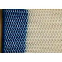 China High Strength 100% Polyester Mesh Screen For Food Conveyor Belt wholesale