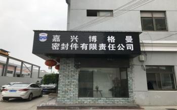 Jiaxing Burgmann Mechanical Seal Co., Ltd. Jiashan King Kong Branch