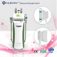 China Big cryo handpiece two handles work together vertical fat freezing cryolipolysis machine wholesale