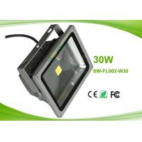 China DC12V , 24V , 36V External LED Flood Lights 30w , CE , RoHS Landscape Flood Lights wholesale