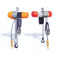 China 250 kg, 500 kg Dual Speed Electric Chain Hoist ( Chain Block ) For Stores, Warehouses, Medicine wholesale