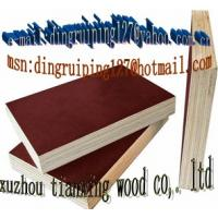 China offer film face plywood and plywood    china wholesale