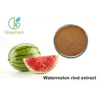 China Non - Irradiated Plant Extract Powder Watermelon Rind Extract Powder wholesale