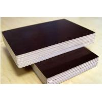 FFP/COMMERCIAL PLYWOOD