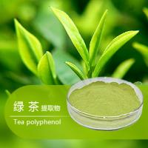 China Green Tea Extract,Tea Polyphenol 50%-98%,Catechins,EGCG,Caffeine,Herbal Extract wholesale