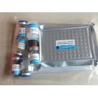 China Human Vascular Endothelial cell Growth Factor(VEGF) ELISA Kit on sale
