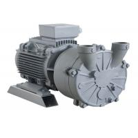 China Heavy Duty Bearing Liquid Ring Vacuum Pump With Stainless Steel Material on sale
