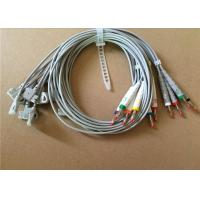 China Philips / HP EKG Cable With 10 Lead Wires 2 Pin Connector Grey Color wholesale