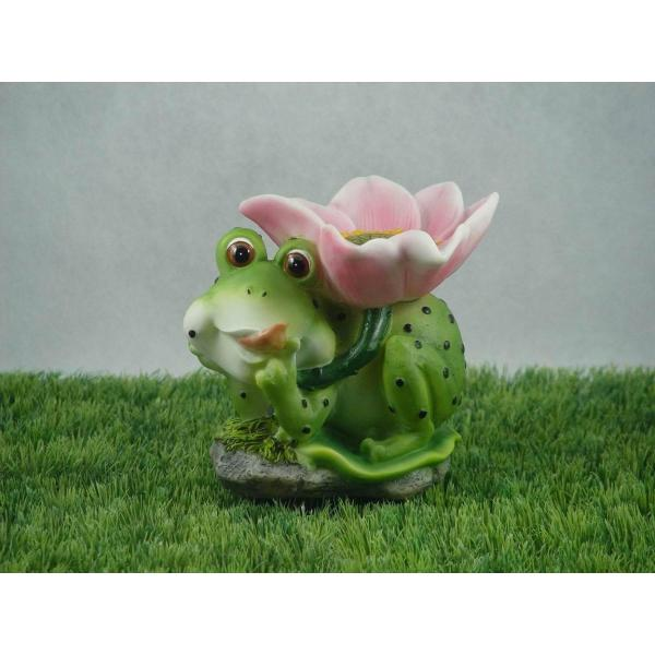 Solar Light Frog With Flower Of Gather