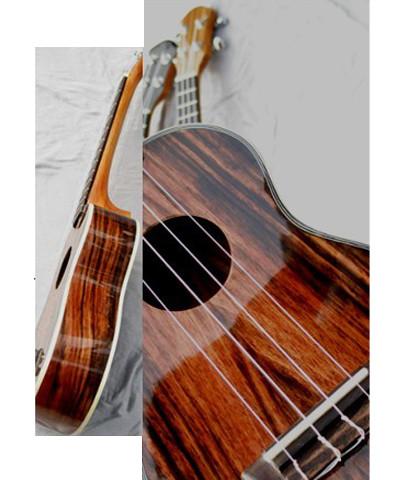 ibanez guitar parts images. Black Bedroom Furniture Sets. Home Design Ideas