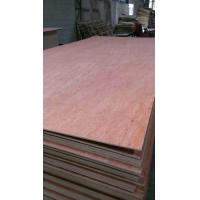 China Good quality and lower price 1.6-18mm packing plywood/uty grade plywood for pallet on sale