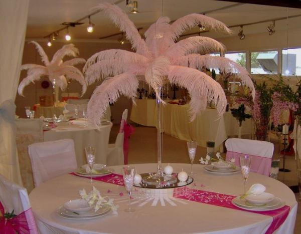 Ostrich drab feathers images