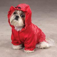 winter pet clothes,down clothes for dogs,dog warm coats