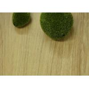 China Easy Maintenance PVC Vinyl Flooring Waterproof Vinyl Plank Click Lock Flooring wholesale